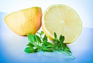 Lemons (1 of 1)