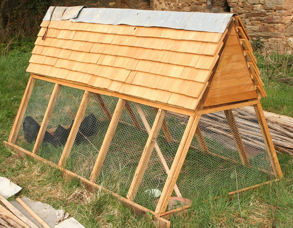 coop Ret: Context Chicken tractor a frame