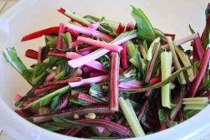 Rainbow Chard Stems