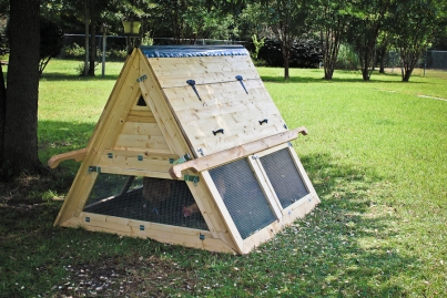 An A-frame chicken ark with roost and nest box up top and a run below.
