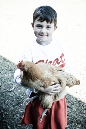 Chicken Waterer-3