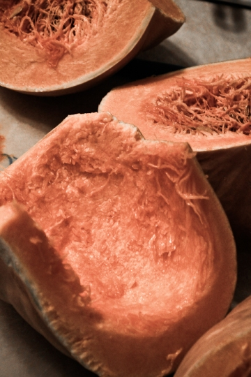 Pumpkin Puree-5