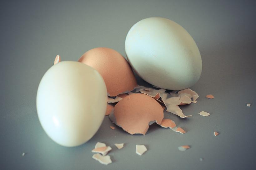 Hardboiled Eggs-1