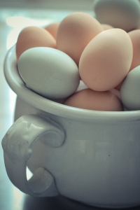 Steaming Eggs-3