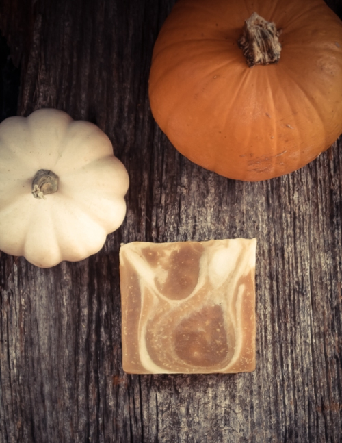 Pumpkin Spice Soap-6
